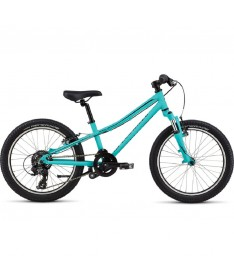 SPECIALIZED HTRK 20 2020
